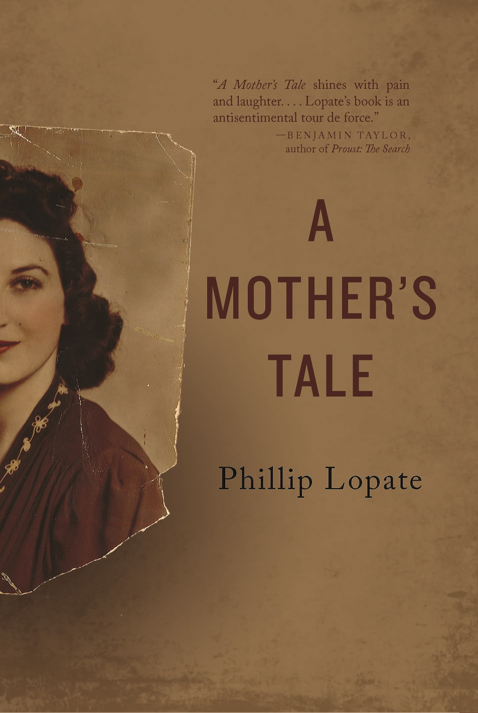 series st century essays a mother s tale
