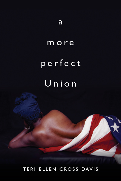 a more perfect Union book cover